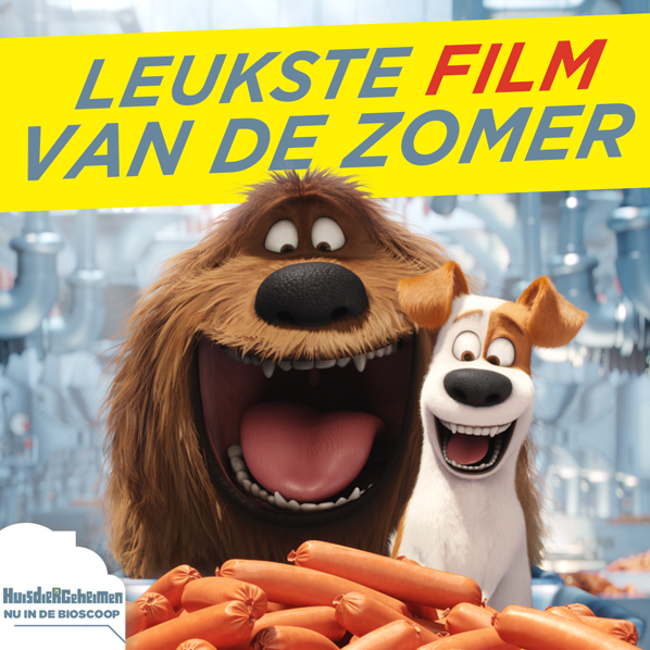 leuksteFilm